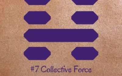 Guidance from the I Ching: 7 – Collective Force